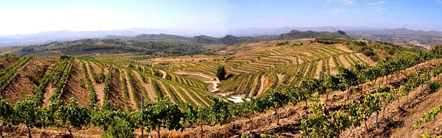 Priorat mas blanc Pinord vi(e) Luxembourg vin espagnol